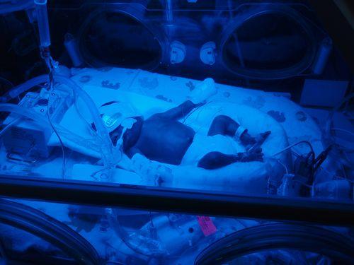 Aja at 2 weeks old